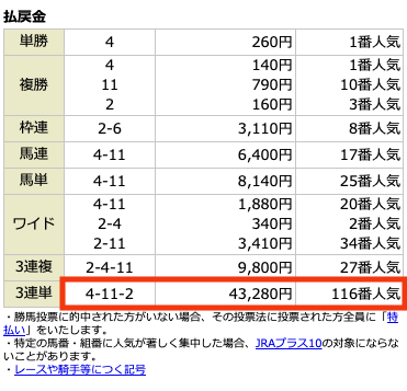 アルカナム5月30日中京9R結果